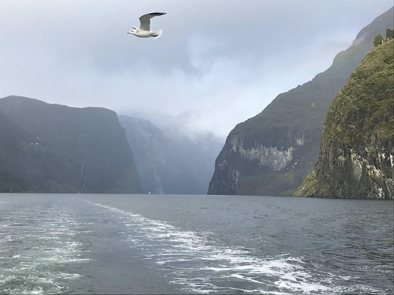 Aurlands Fjord Cruise
