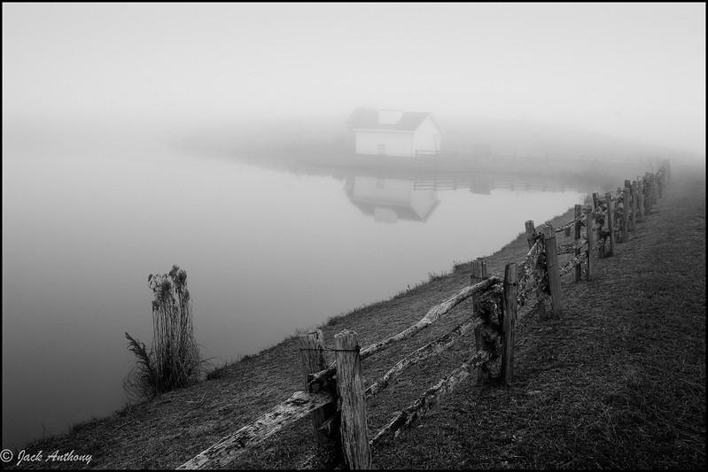 20041027-swan lake fog_9x6 5920.jpg