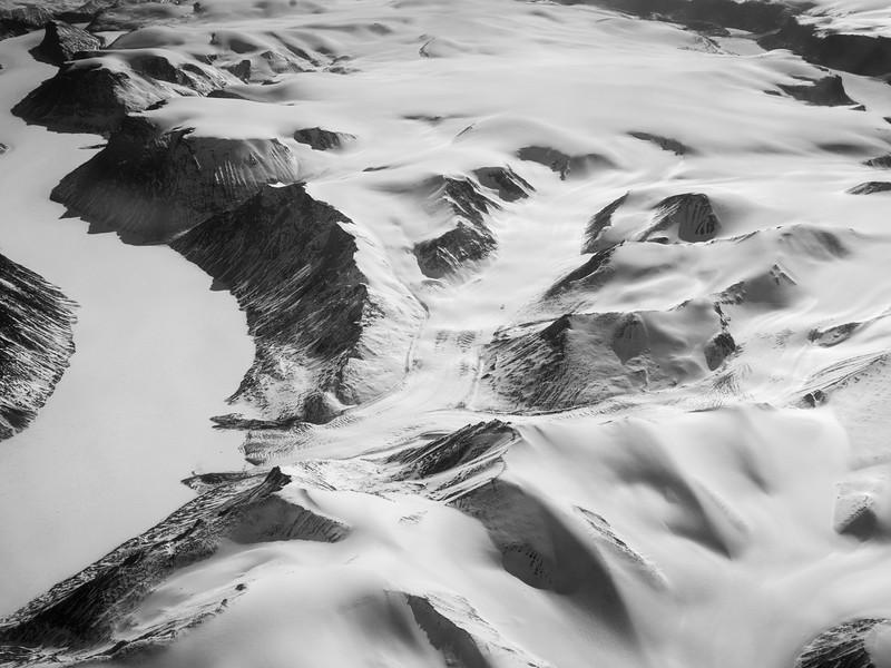Bylot Island-1020568.jpg