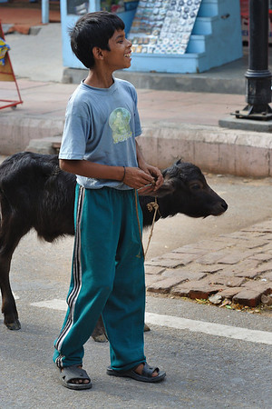 India - Street Life