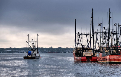 New Bedford Color