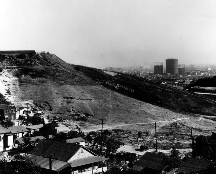 Hilllside View