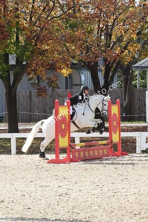 2015 Octoberfest Horse Trials Show Jumping