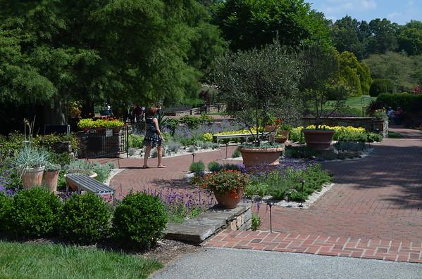 Longwood Gardens: Summer 2014