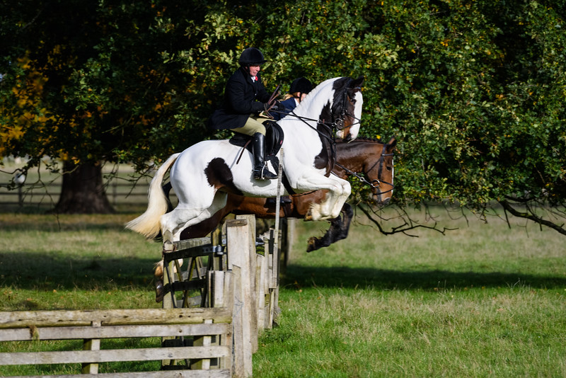 Fitzwilliam Opening meet Nov 2019-124-69.jpg