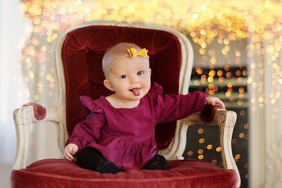 2017 | Kerrigan, 7 months old