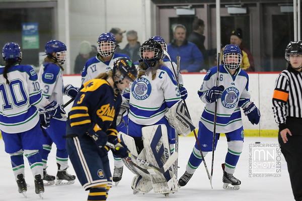 2018 - 2019 Girls Hockey