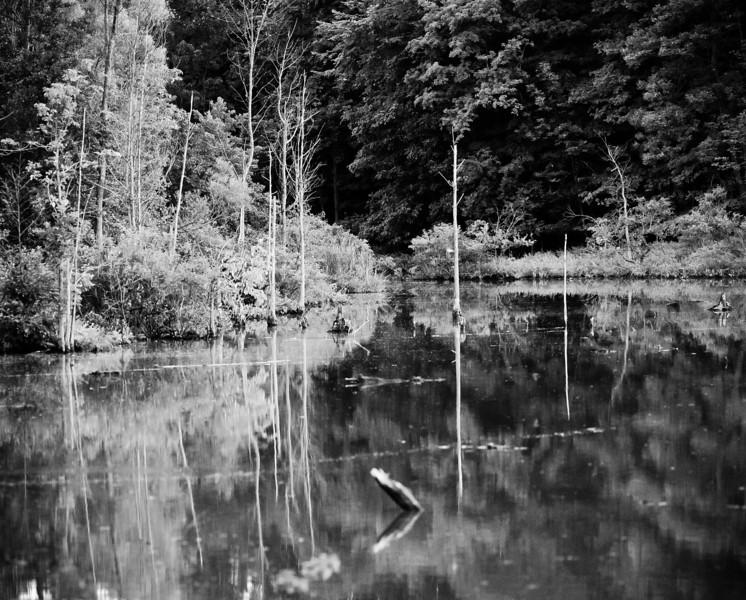 20100818_lake_isaac_028_pano-2.jpg