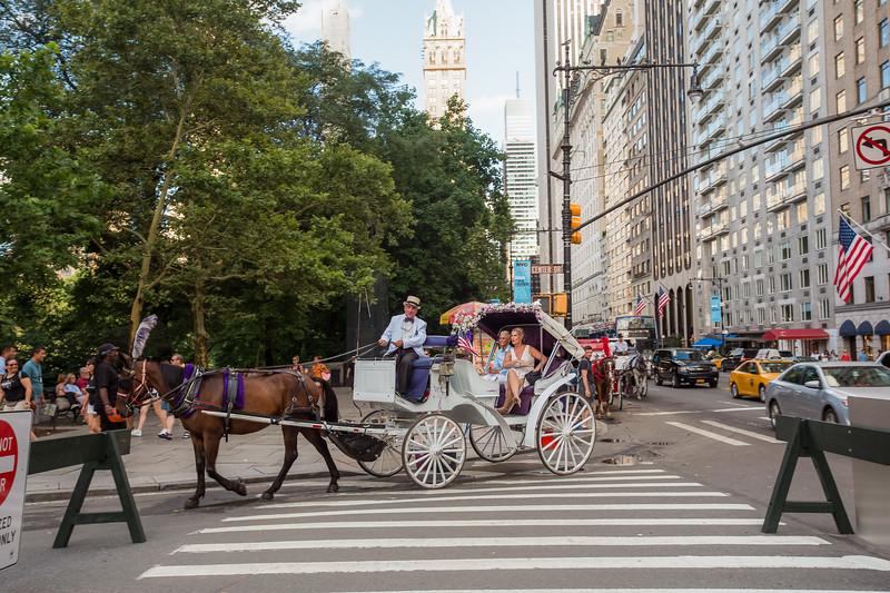 Central Park Wedding - Beth & Nancy-165.jpg