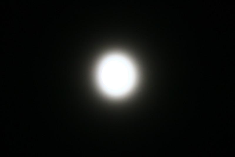 SHAY9666.JPG