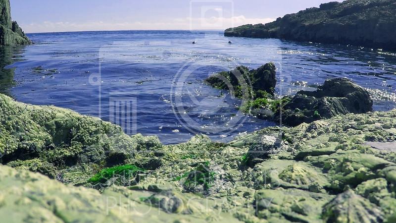 Lundy Island Edit.Still036.jpg
