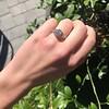 1.11ct Old European Cut Diamond Filigree Ring 24