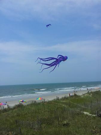 Stan's pics my kites