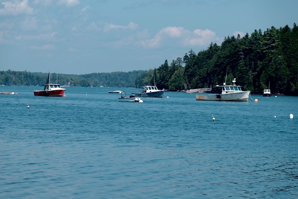 One Afternoon in Harpswell