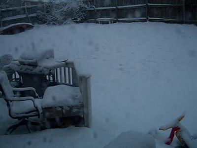 2010 - 02 - Big Snow