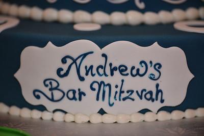 Andrew's Bar Mitzvah