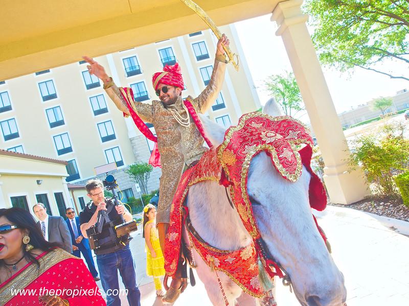 Shiva-Wedding-2018-03-002728.JPG