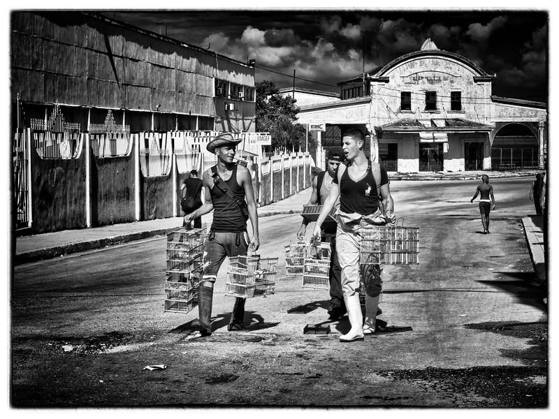 Cuba Day 4 Trip 1 (128).jpg