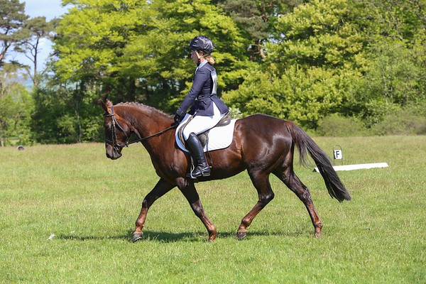 CRC - Dressage Day - May 2017