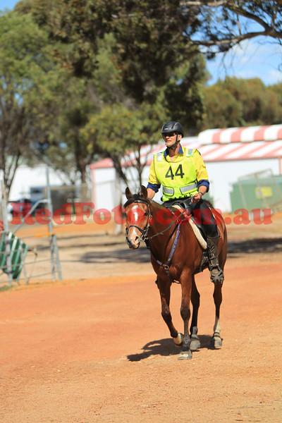 2014 10 04 Tom Quilty Gold Cup Endurance Leg 5