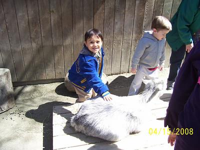 Nicholas Zoo
