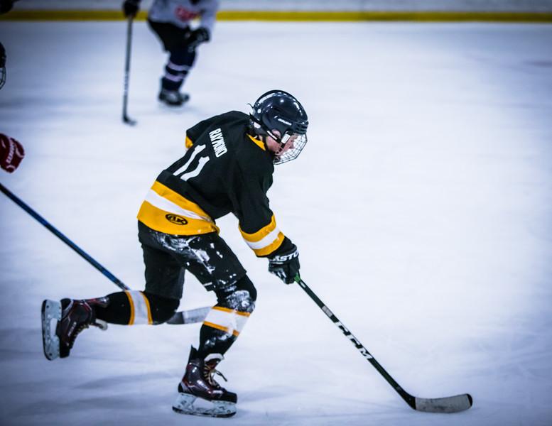 Bruins2-371.jpg