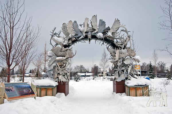 Fairbanks Winter~2012