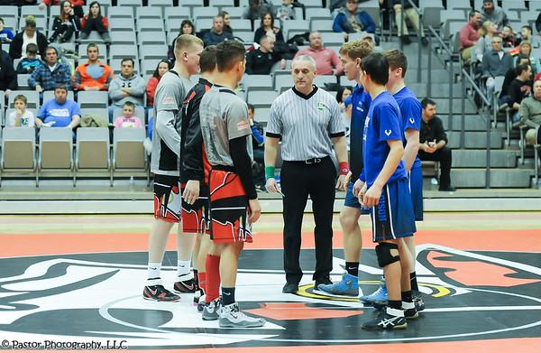 Wrestling Action