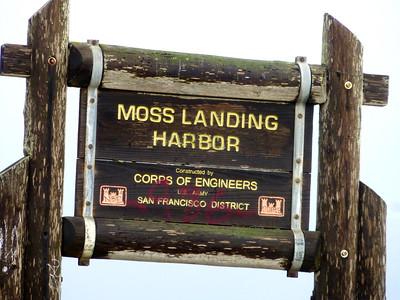 Moss Landing 3/5/16