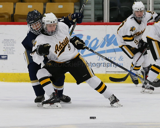 Adrian College vs Trine women's hockey
