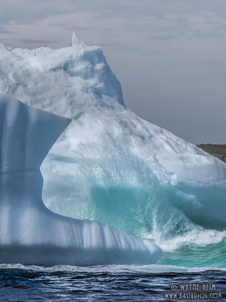 Iceberg 30   Photography by Wayne Heim