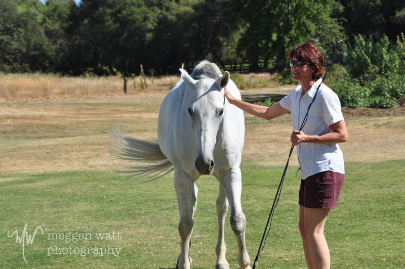 EB&Horses-066.jpg