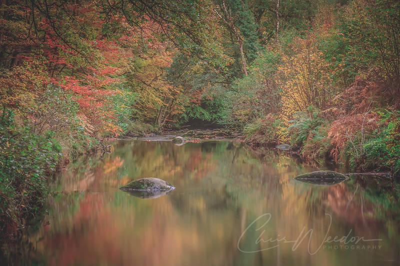 fingle gorge-0158.jpg