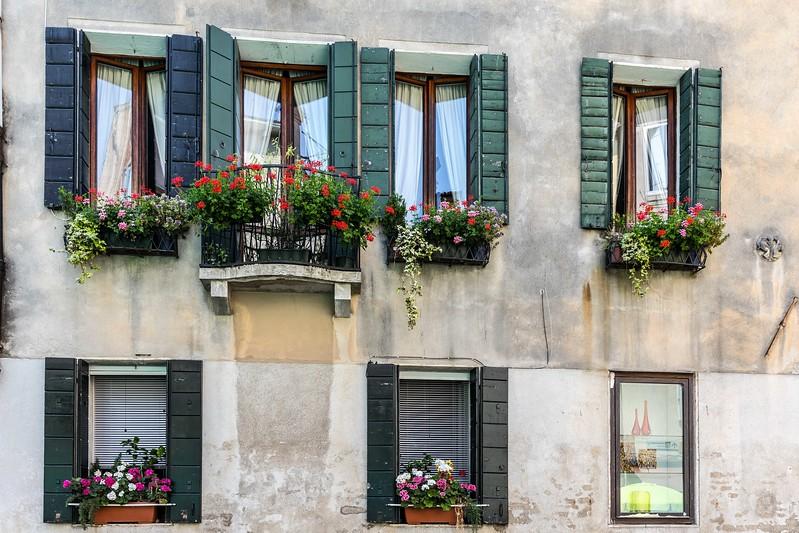Window Boxes in Venice-6195.jpg