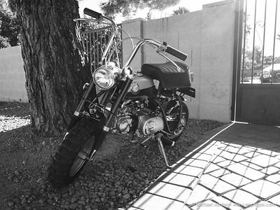 Honda - Mini Trail