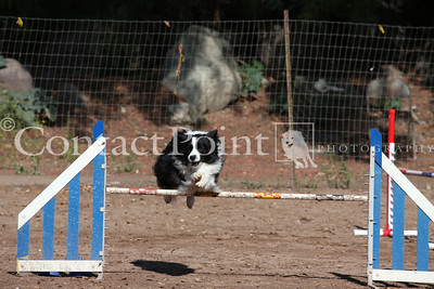 Contact Point AKC Agility Trial - Saturday, 6/14/14