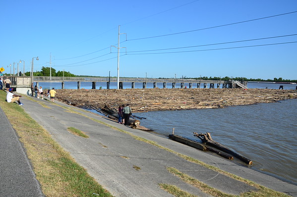 2011 Logjam on the Mississippi River at Rivertown, Kenner
