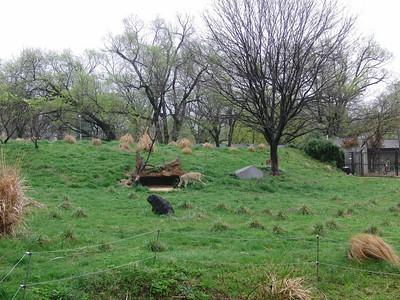 2009 - Rainy Day at the Zoo