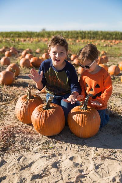 pumpkin patch oct 15 2016-5.JPG