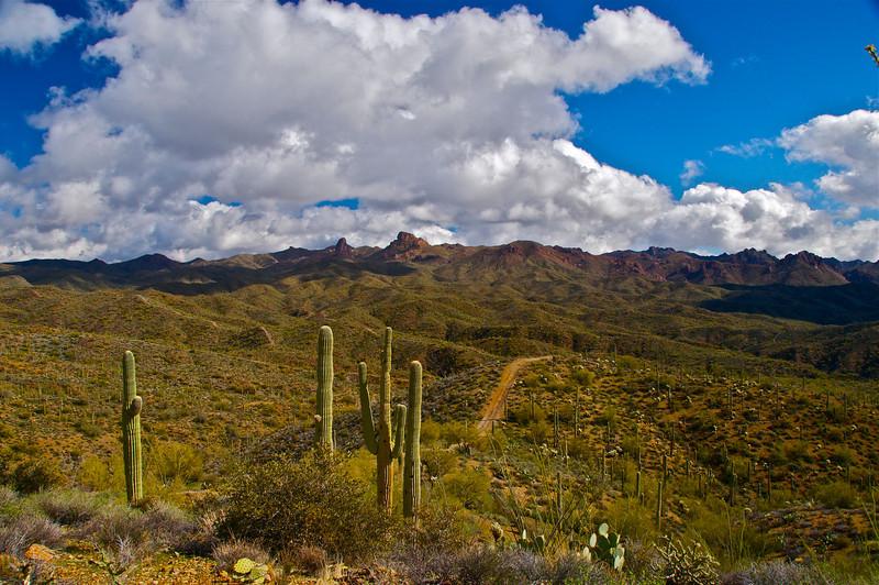 Box Canyon, AZ5.jpg