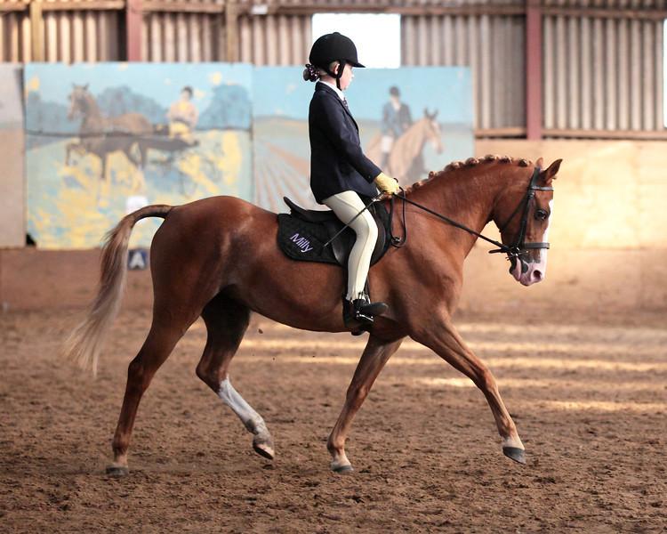 Dela's Horse