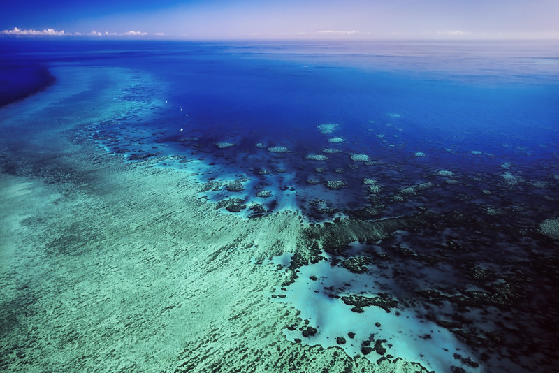 Reef Moorings