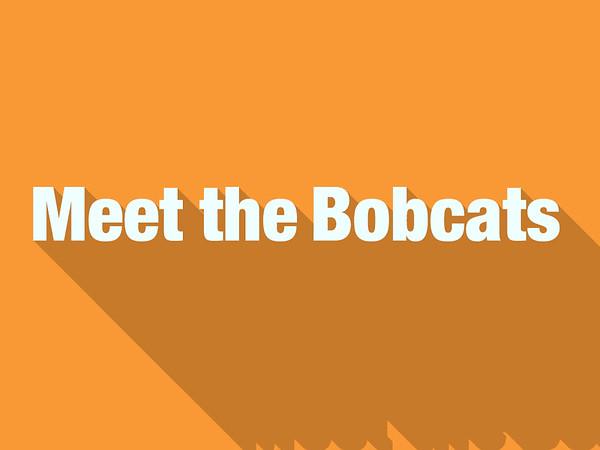 Meet the Bobcats