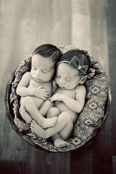 twins-LS-bw.jpg