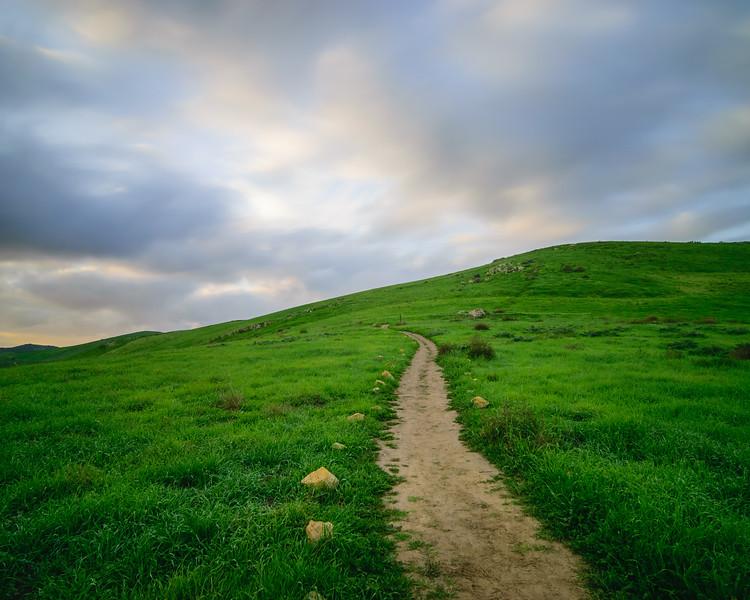 Irvine suburban landscapes-06.jpg