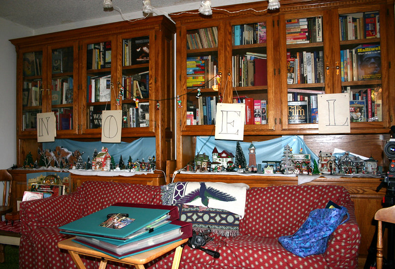 NOEL on bookcases