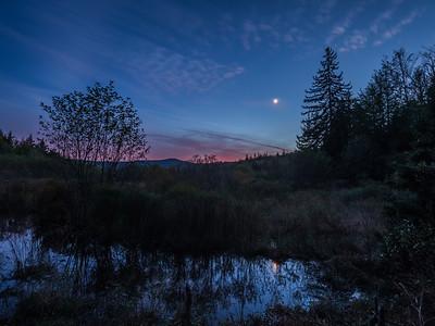 cranberry wilderness, october 2018