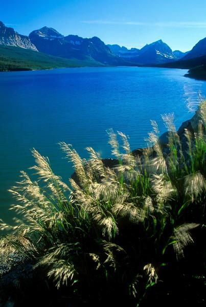 Montana - 2002