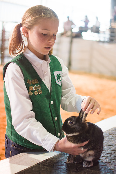 2016 HC Fair Youth Livestock Events