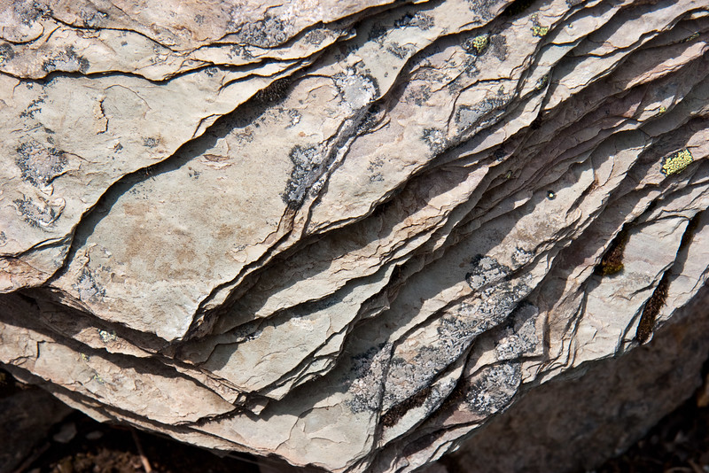 Rock in The Rockpile
